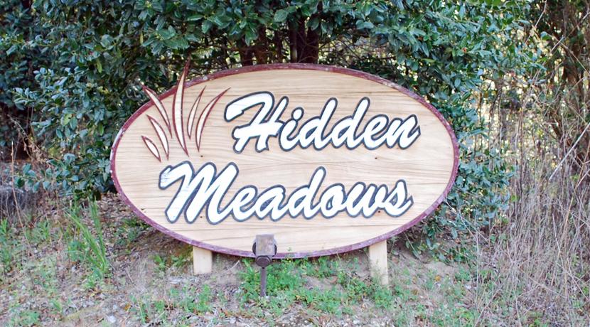 Hidden Meadows