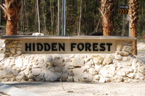 Hidden Forrest